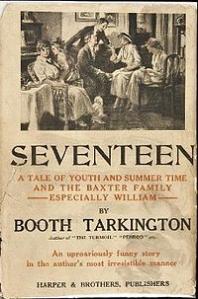 Seventeen book cover