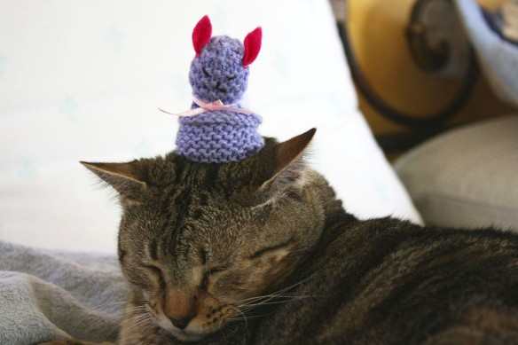 Things on Cowboy's Head No. 15: Knitted egg cosy.