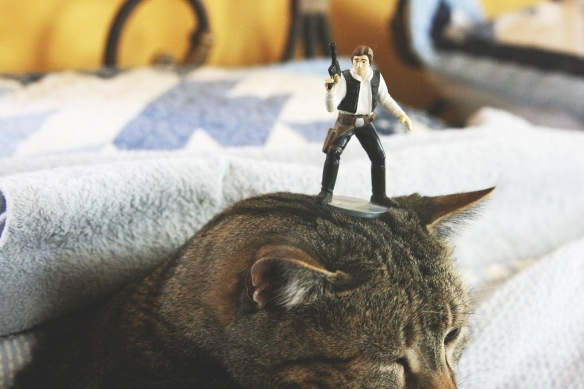 Things on Cowboy's Head. No. 22: Hans Solo action figure.