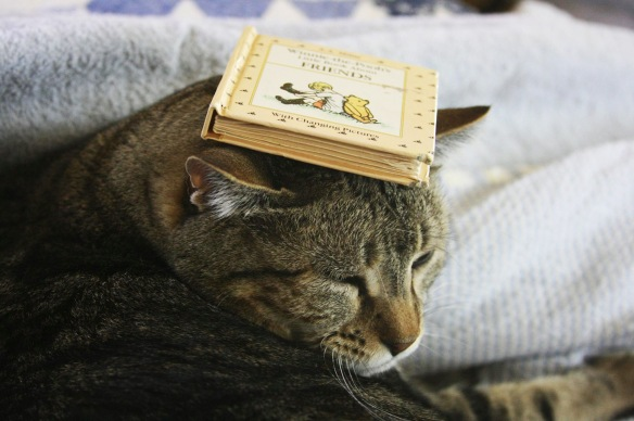 Things on Cowboy's Head No. 24: Winnie the Pooh book.