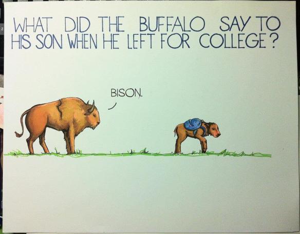 bison-pun