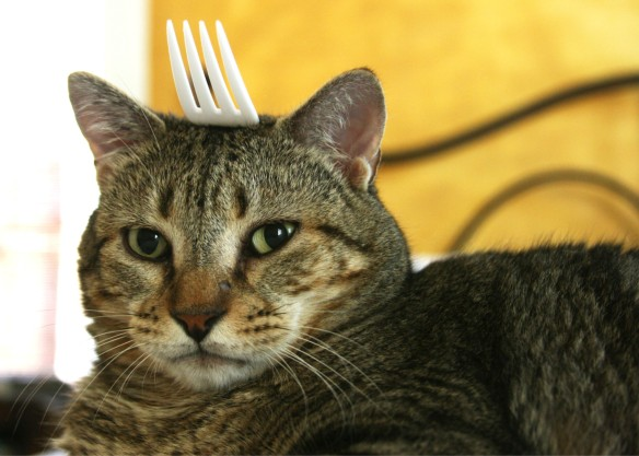 Things on Cowboy's Head. No. 51: Plastic fork.