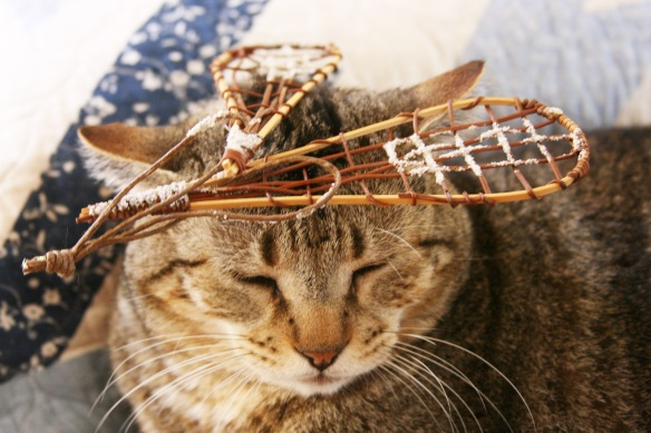 Things on Cowboy's Head. No. 50: Miniature snowshoes.