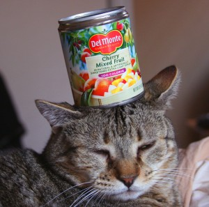 Things on Cowboy's Head. No. 47: Fruitcan.