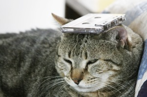 Things on Cowboy's Head. No: 58: an old cassette tape.