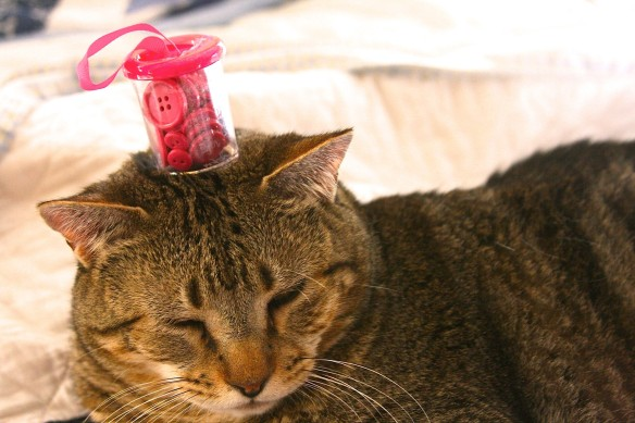 Things on Cowboy's Head. No: 57: A small jar of buttons.