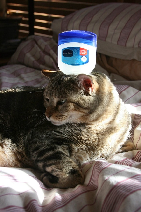 Things on Cowboy's Head No. 61: Empty Vaseline Jar.