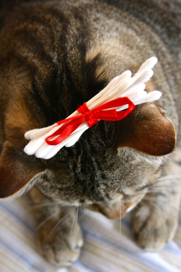 Things on Cowboy's Head No. 64: Bunch of cotton buds tied w ribbon.