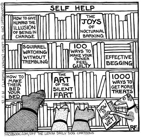 dog_library