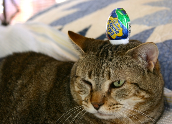 Things on Cowboy's Head No. 77: Cadbury's Crème Egg.