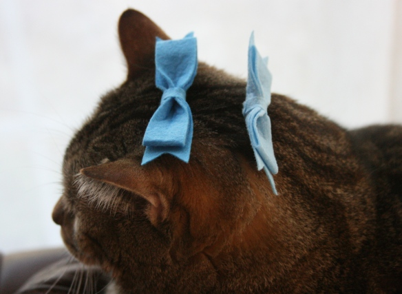 Things on Cowboy's Head No. 79: Ribbons.