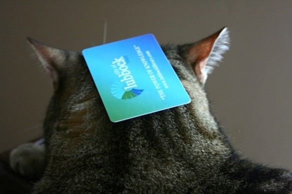 Things on Cowboy's Head No. 86: Library Card.