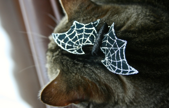Things on Cowboy's Head No. 98: Halloween bat hair clip.
