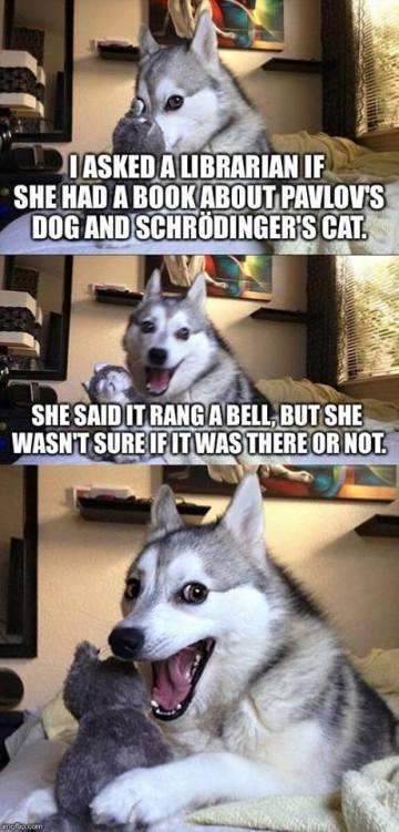 dog_books