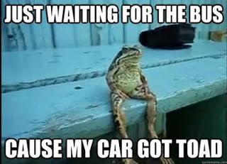 frog_pun