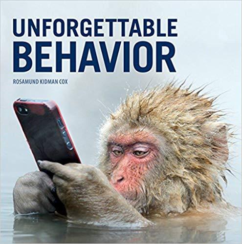 monkey-book